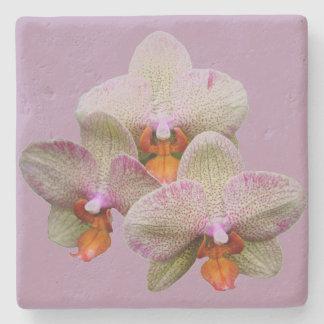 Orquídea de pedra da porta copos porta copos de pedra