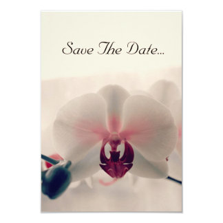 """Orquídea """"economias cartão da data"""" convite 8.89 x 12.7cm"""