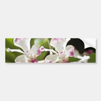 Orquídea roxa e branca adesivo para carro