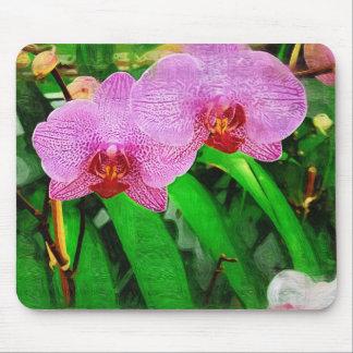 orquídea tropical, paisagem de florida mouse pad