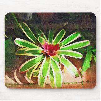 orquídea tropical, paisagem de florida mousepad