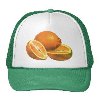 Os alimentos do vintage, frutificam laranjas boné