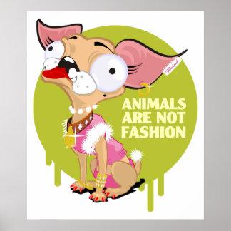 Os animais não são forma! poster