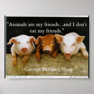 os animais são meus amigos pôster
