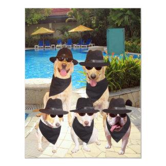 Os cães engraçados customizáveis dos convite 10.79 x 13.97cm