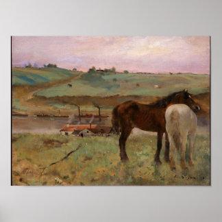 Os cavalos em um prado desgaseificam o impressão d
