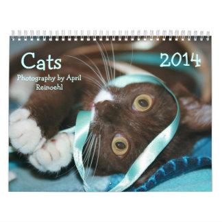 Os gatos calendar 2014 calendário