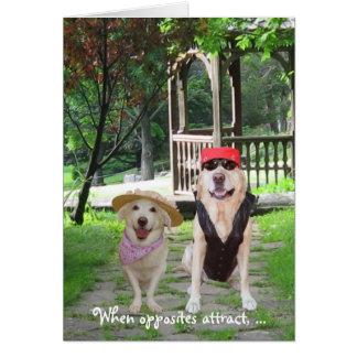 Os opostos atraem cães engraçados cartao
