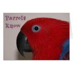 Os papagaios sabem cartoes