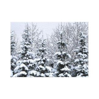 Os pinhos nevado esticaram o impressão das canvas