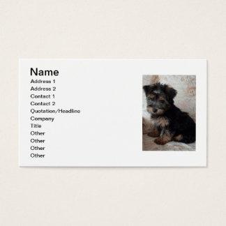 Oscar o yorkshire terrier cartão de visitas