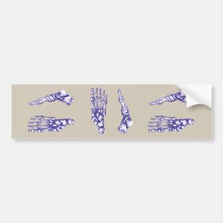 Ossos dos pés - azul adesivo de para-choque