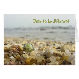 Ouse ser Shell & seixos diferentes na praia Cartão