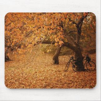 Outono do Central Park - Nova Iorque Mousepad