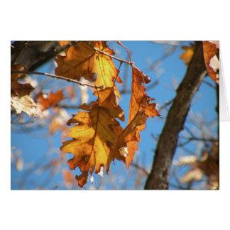 Outono na fuga apalaches cartão de nota