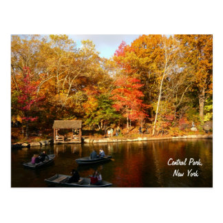 Outono no Central Park (cor) Cartão Postal