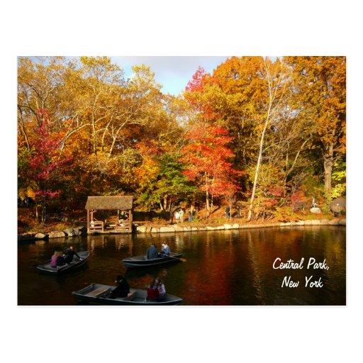 Outono no Central Park (cor) Cartões Postais