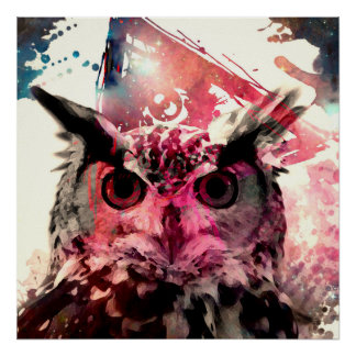 Owl and pink pôster