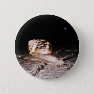 Padrão, botão redondo do caracol de jardim da bóton redondo 5.08cm