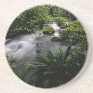 Paisagem Amazon do rio do córrego da selva Porta-copos