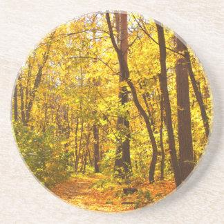 Paisagem bonita - estrada na floresta do outono porta copos de arenito