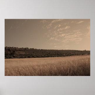 Paisagem cinemático de campos de trigo poster