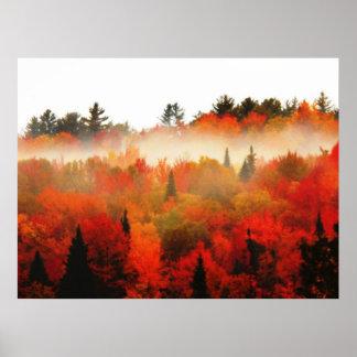 Paisagem da cena das árvores do Adirondacks do cam Poster