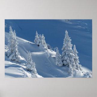 paisagem da neve do inverno poster