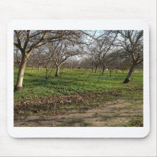 paisagem das árvores do pomar mouse pad
