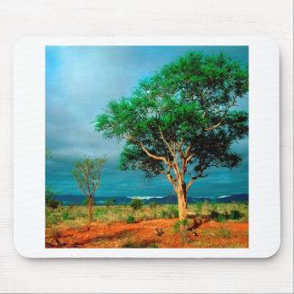 Paisagem do africano da árvore mouse pad