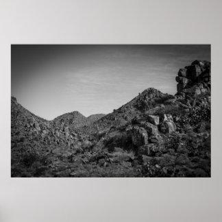 paisagem do deserto com grafites poster