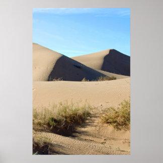Paisagem do deserto pôsteres