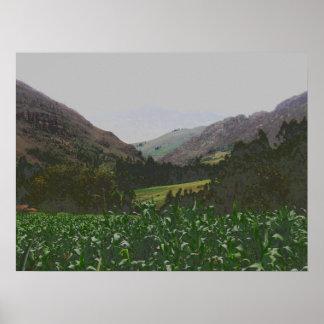 paisagem do inca pôsteres