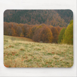 Paisagem do outono mouse pad