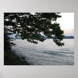Paisagem do rio e da árvore pôsteres