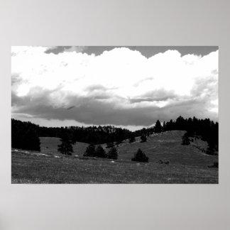 Paisagem em preto e branco pôsteres