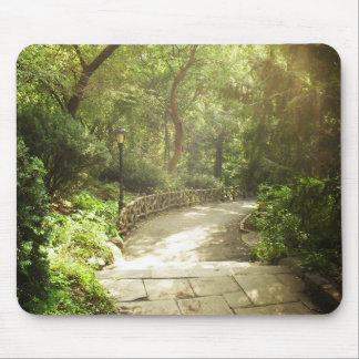 Paisagem luxúria do Central Park, Nova Iorque Mouse Pad