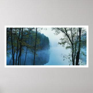 Paisagem panorâmico da floresta & do rio poster