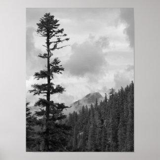 Paisagem preto e branco de suspensão das nuvens póster