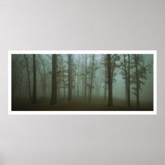 Paisagem sombrio panorâmico da floresta posteres