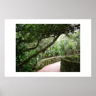 Paisagem tropical poster