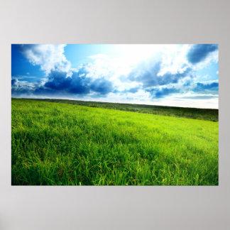 Paisagem verde poster