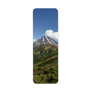 Paisagem vulcânica do verão cénico de Kamchatka Etiqueta Endereço De Retorno