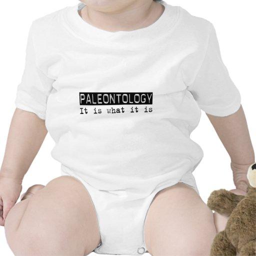 Paleontologia é camiseta