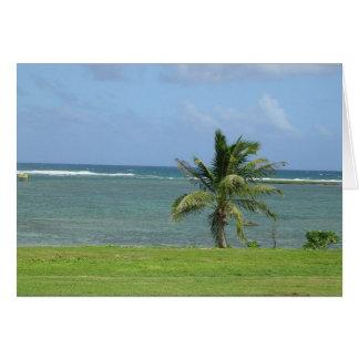 palmeira cénico cartão