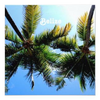 Palmeiras de Belize Convite Quadrado 13.35 X 13.35cm
