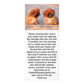 Panfleto Cães bonitos de Pekingese