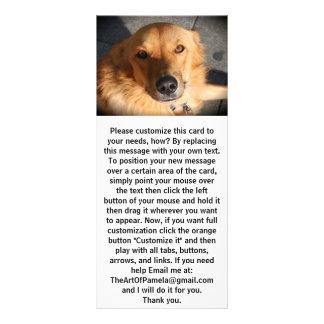 Panfleto Cão bonito do golden retriever