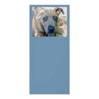 Panfleto Filhote de cachorro rajado do pitbull por Shirley
