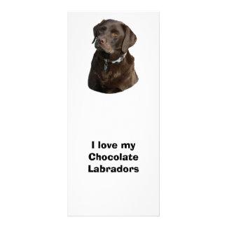 Panfleto Retrato da foto do cão de Labrador do chocolate